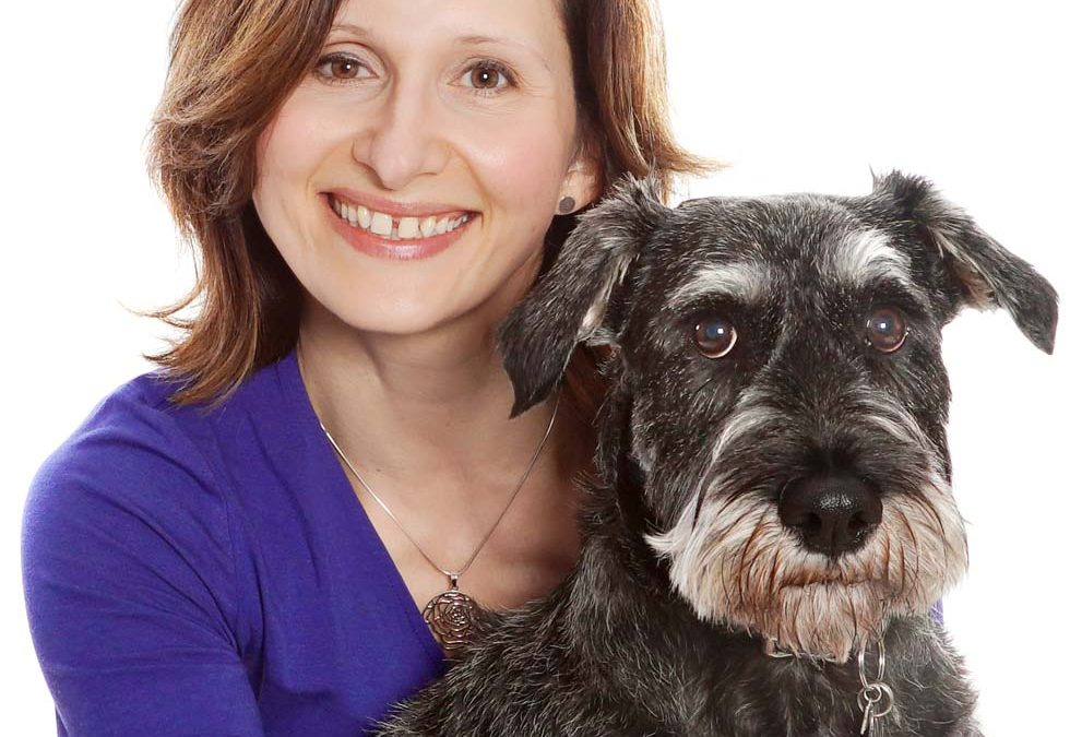 Pet Photography - Doggy Smash - Puppy Smash