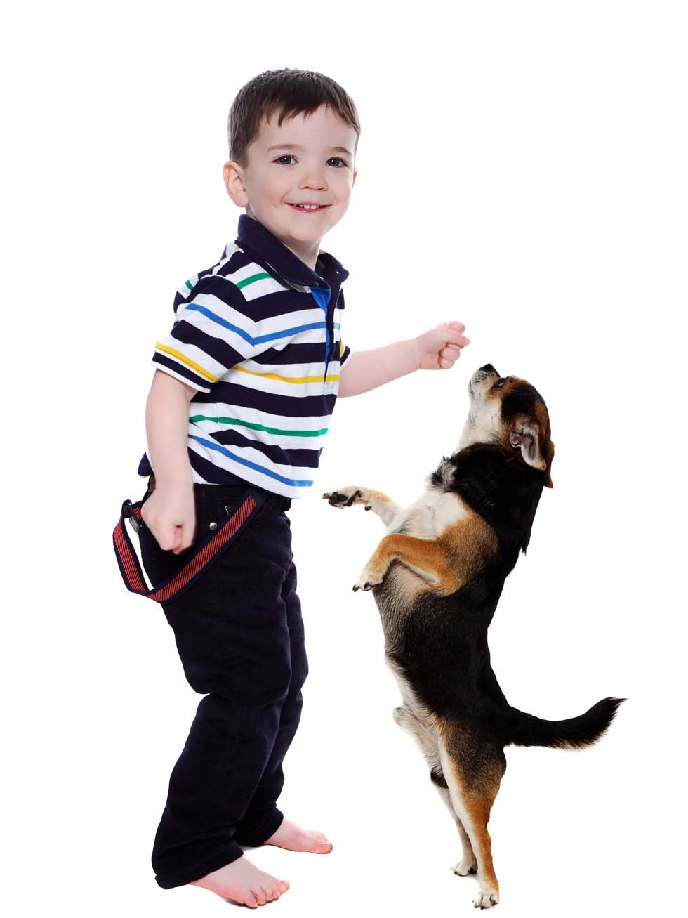 Pet Photography, boy and dog, dog and child
